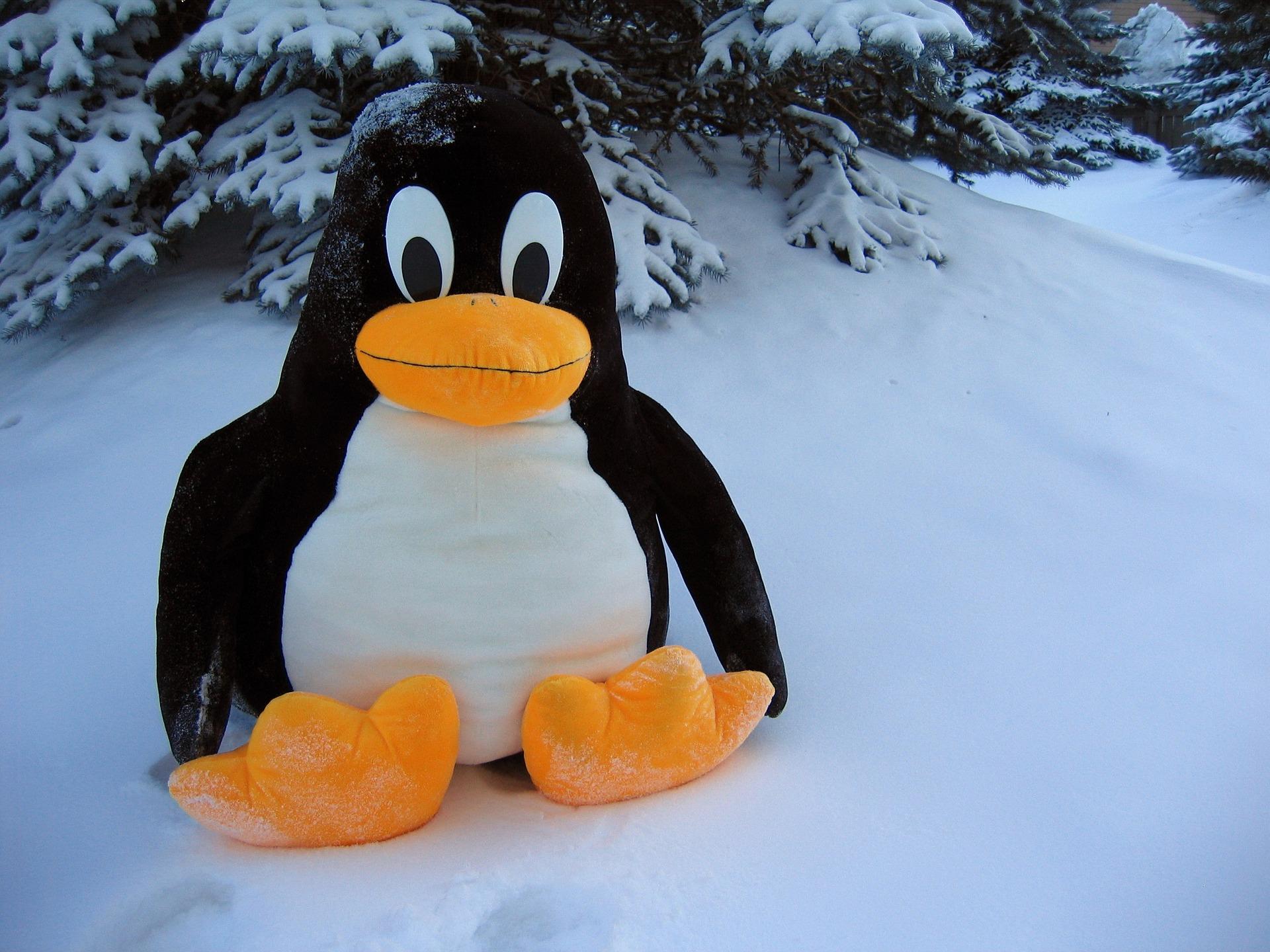 Ubuntu – wrażenia po roku użytkowania